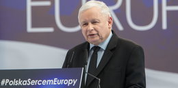 Kaczyński naprawdę to powiedział?! Śmieszne wideo