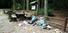Leśnicy z Pomorza biją na alarm: Z lasów robi się śmietniska!