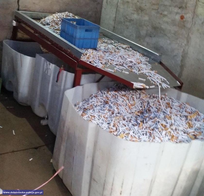 Spalą miliony papierosów
