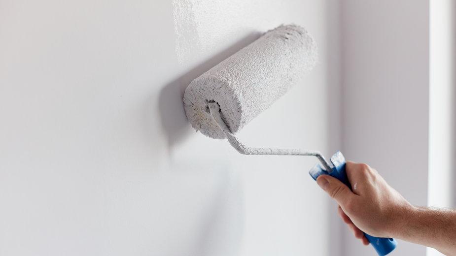 Malowanie ścian to jedna z podstawowych czynności przy wykańczaniu mieszkania - Artur Nyk/stock.adobe.com
