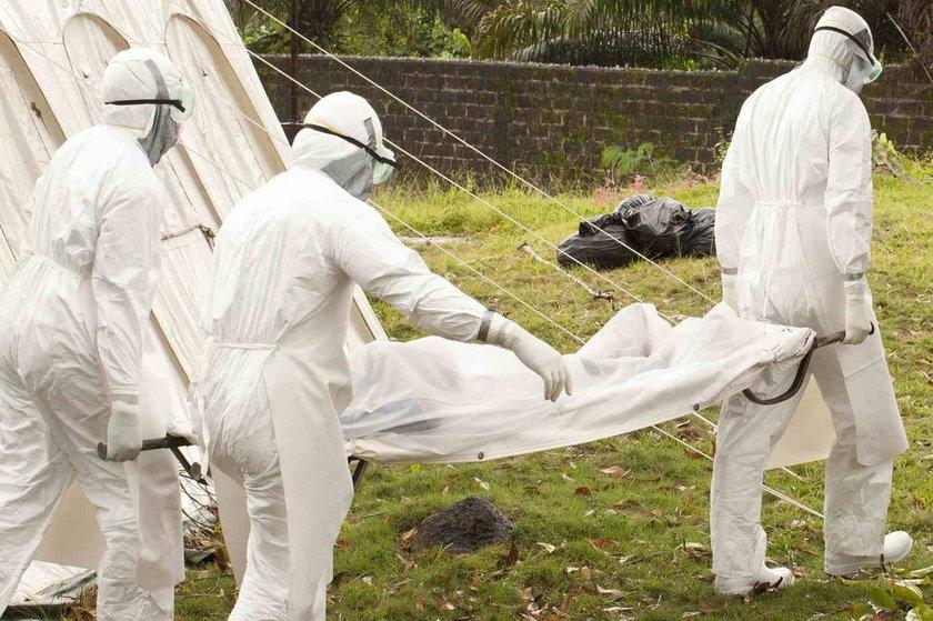 Wirus ebola w Europie