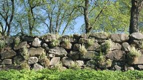Jak wybudować ogrodzenie z kamienia?