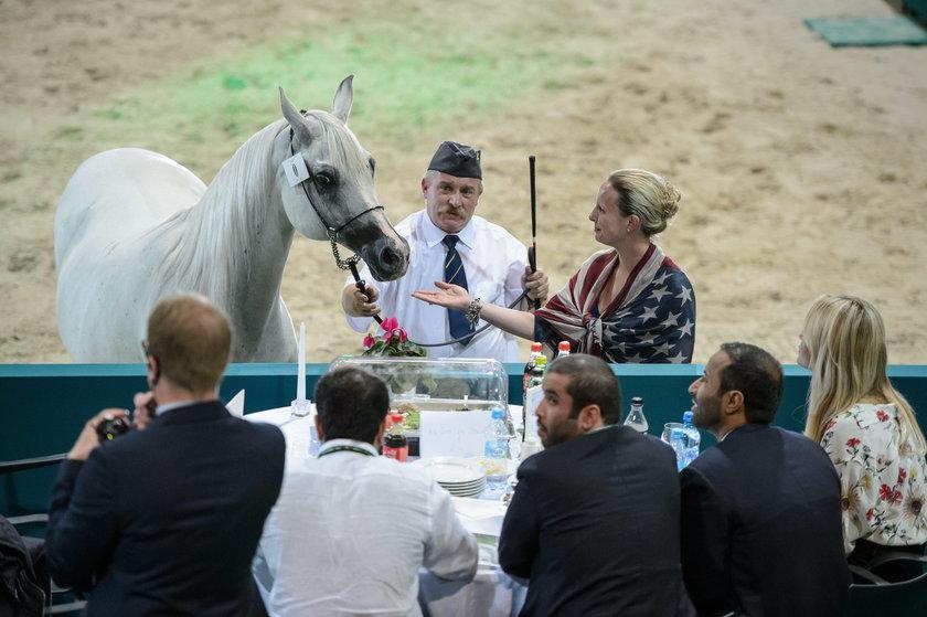 Ordynarne oszustwo na aukcji koni arabskich?