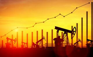 Ropa powoli odrabia straty po 10-proc. spadku ceny