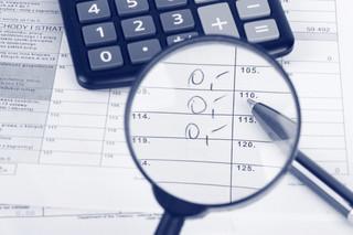Raje podatkowe pod kontrolą urzędników
