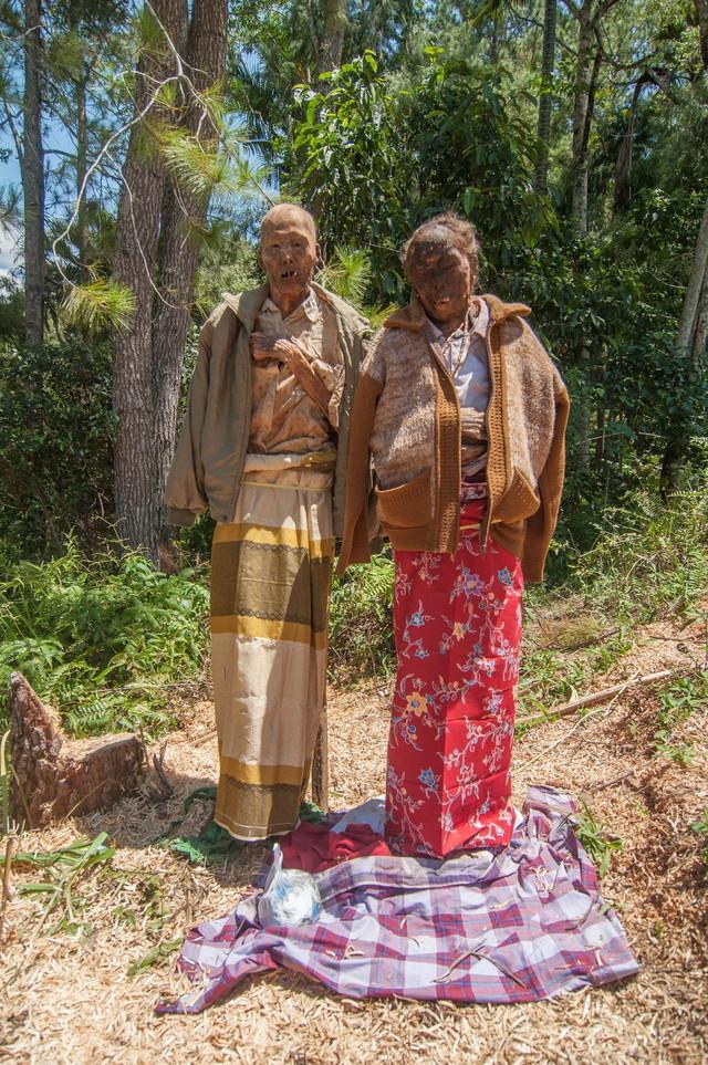 """Na svakih nekoliko godina, ljudi iz Toraje u Indoneziji iskopavaju tela svojih predaka, a ritual se naziva """"Ma'nene"""" iliti ceremonija čišćenja leševa. Tokom ceremonije, tela se čiste, oblače i češljaju."""