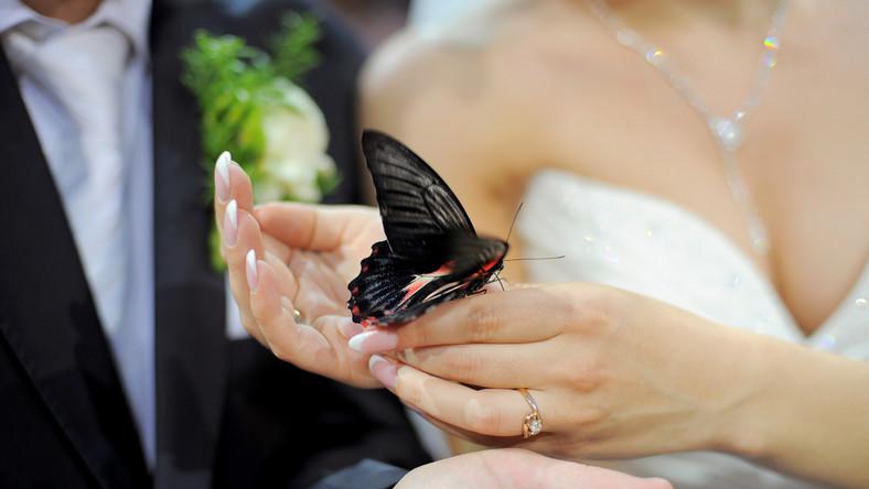 Nowa moda ślubna