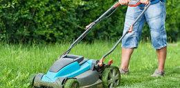 Przygotuj swój ogród na sezon grillowy. Z tymi urządzeniami to będzie proste!