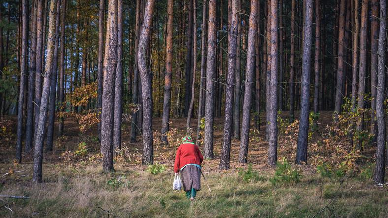 Starsza kobieta na grzybach w lesie