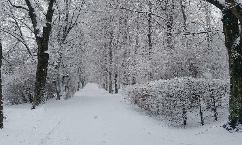 Piątek, sobota, niedziela - w weekend czeka nas prawdziwie zimowa pogoda.