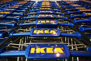 Wiceszef MS o zwolnieniu pracownika sieci IKEA: Skandaliczne działanie, łamanie wolności sumienia