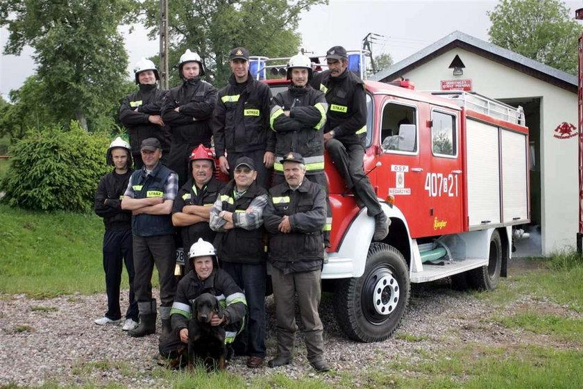 16 strażaków szukało krowy