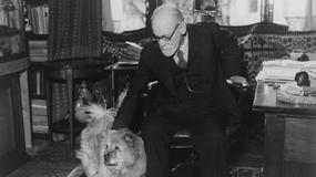 Zygmunt Freud - geniusz czy szarlatan?