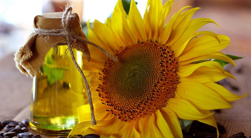 Incredible benefits of sunflower oil for your skin