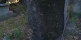 Człowiek, czy wampir? Miał 682 lata?