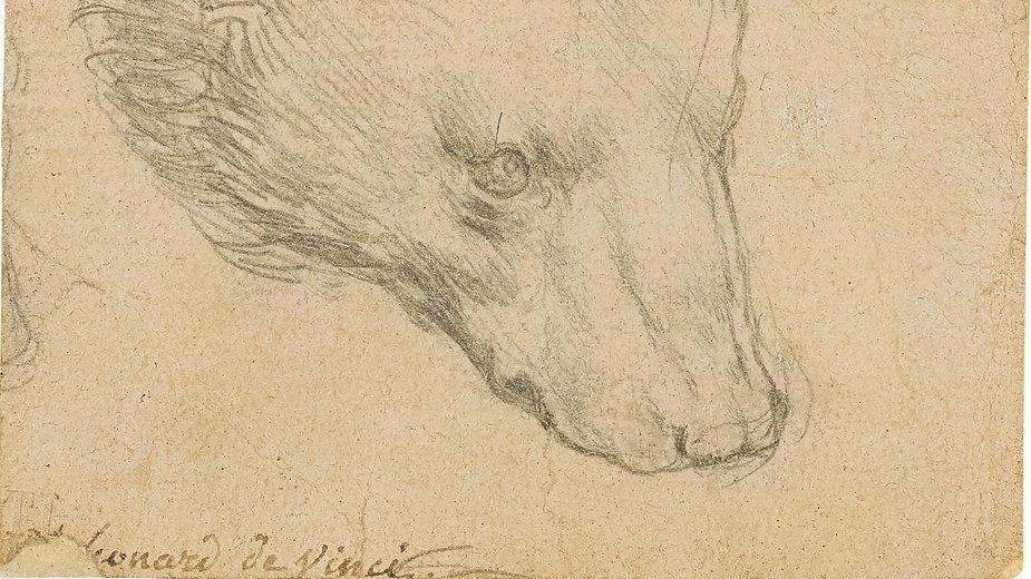 Rysunek Leonarda da Vinci na aukcji w londyńskim Christie's