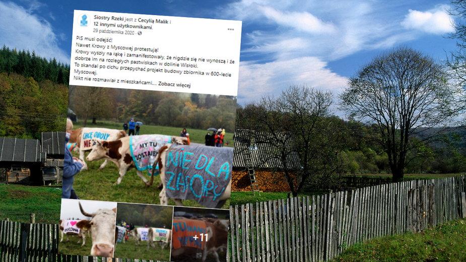 Wody Polskie planują wybudować zbiornik retencyjny Kąty-Myscowa na Wisłoce