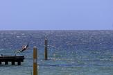 Indijski okean, EPA-ROBERT GHEMENT