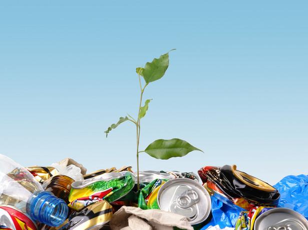 W ramach konkursu eksperci EFOE, którzy badają ekologiczne kompetencje polskich firm, oceniają m.in. zgodność ich działań z polskim i europejskim prawem środowiskowym, innowacyjność proekologiczną i skuteczność stosowanej strategii opartej o ekologiczne kryteria.
