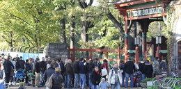Mniej za bilety do zoo