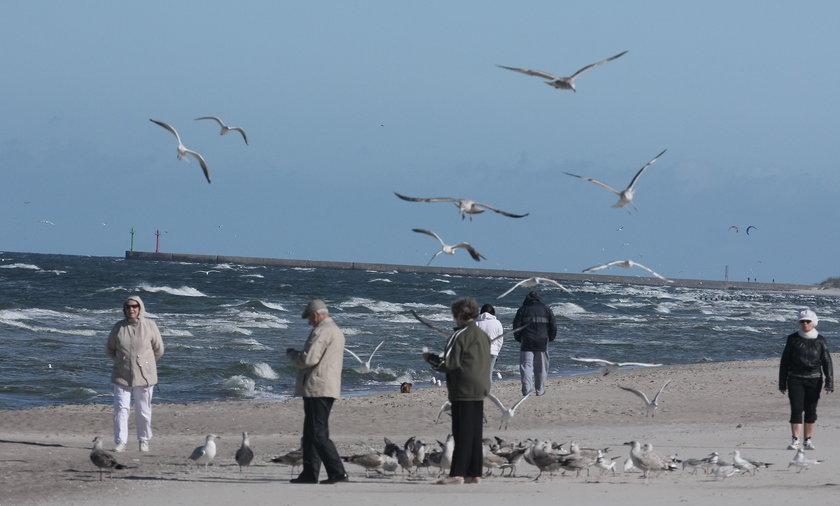 Bałtycka plaża po sezonie