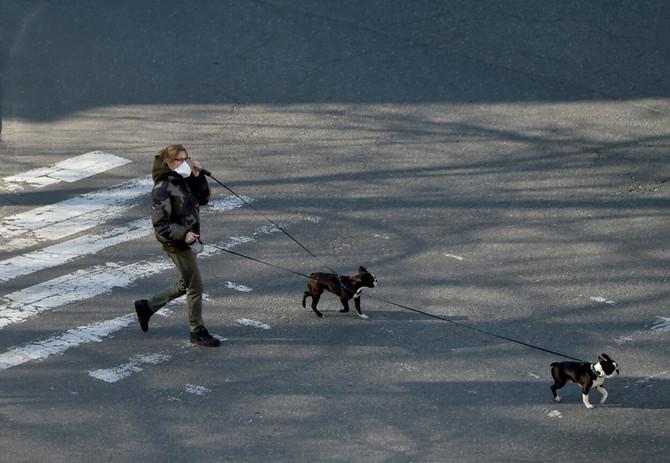 Da li psi i mačke prenose korona virus?