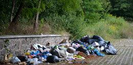 W Łodzi wciąż zalegają śmieci! A miało być czysto