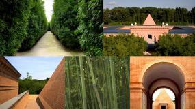 Największy na świecie labirynt powstał we Włoszech koło Parmy