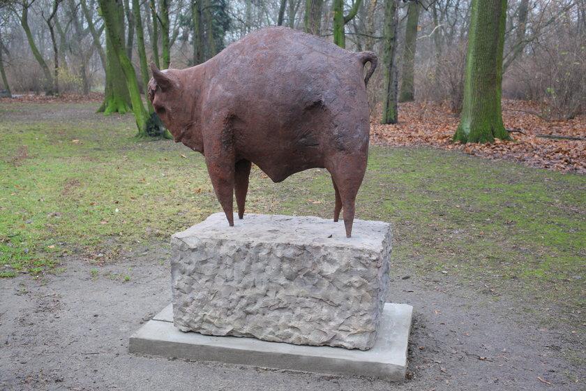 Tak wygląda odnowiony Żubr w parku Praskim
