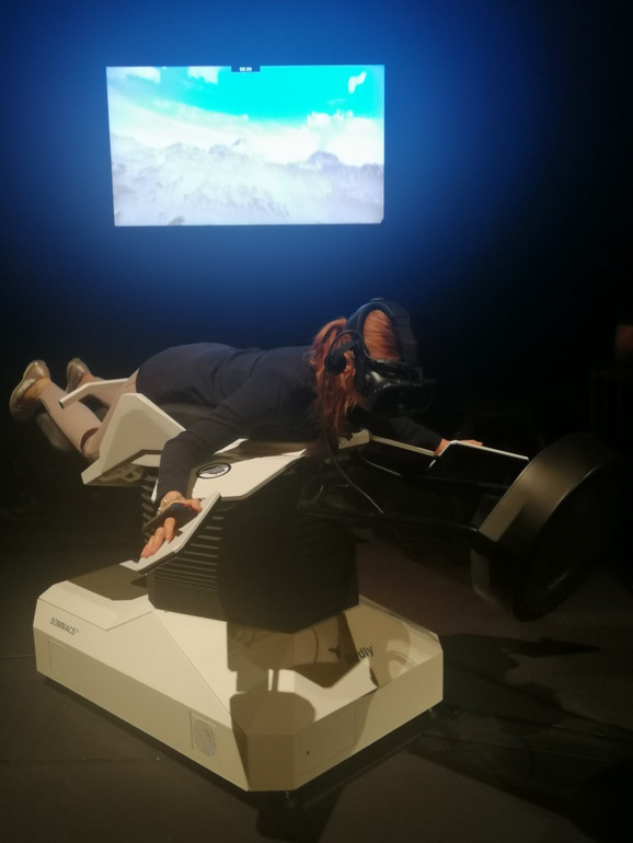 Birdly simulator letenja