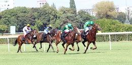 Wielki sukces polskich wyścigów konnych