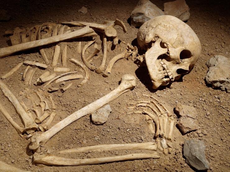 smrt profimedia-0013285197