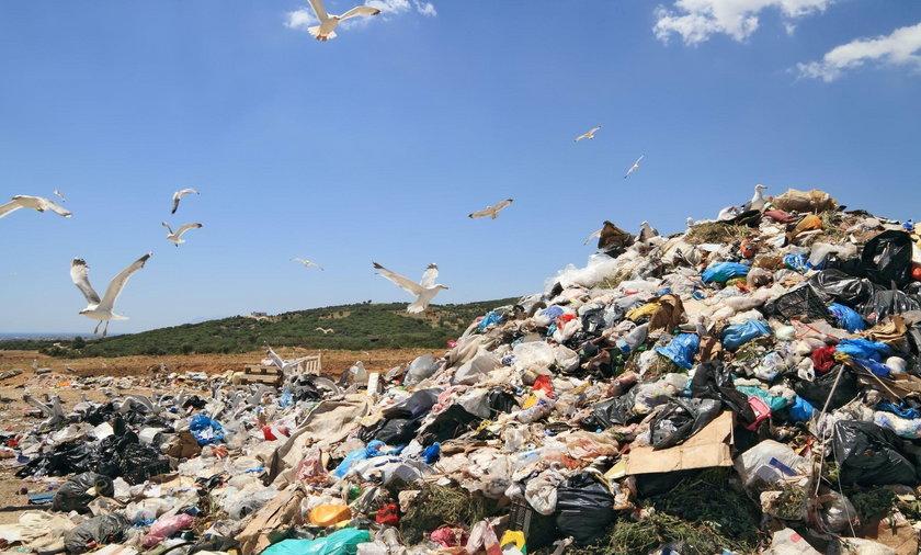 Coraz więcej śmieci trafia do Polski
