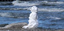 Śnieg topnieje, pcha się wiosna. Mamy prognozę na 5 dni