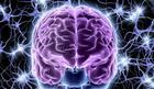 Naš mozak klasifikuje podatke i tokom sna