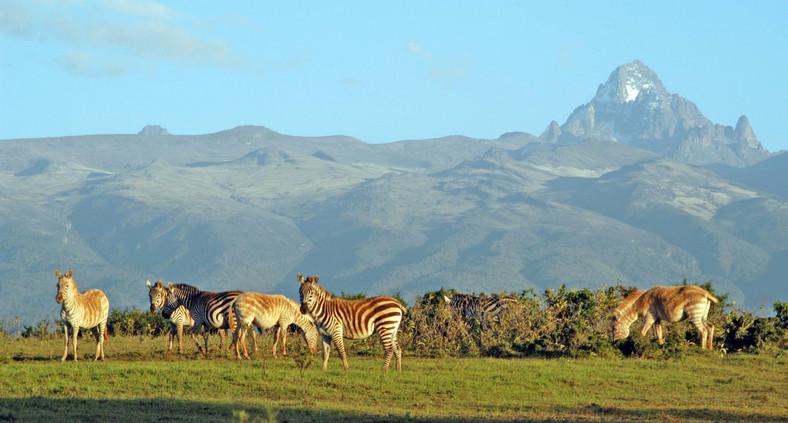 Wild animals leisurely graze at Meru National Park with Mt Kenya on the background. (meru)