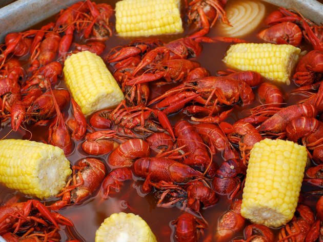 Crayfish contains amazing nutrients that benefits the health [ec e-auto-gen]