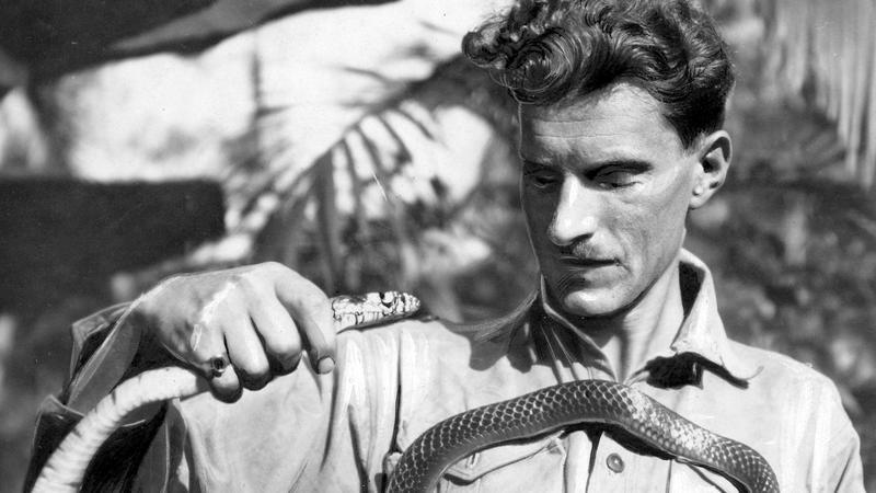 Arkady Fiedler z wężem podczas polskiej ekspedycji naukowej do Puszczy Brazylijskiej