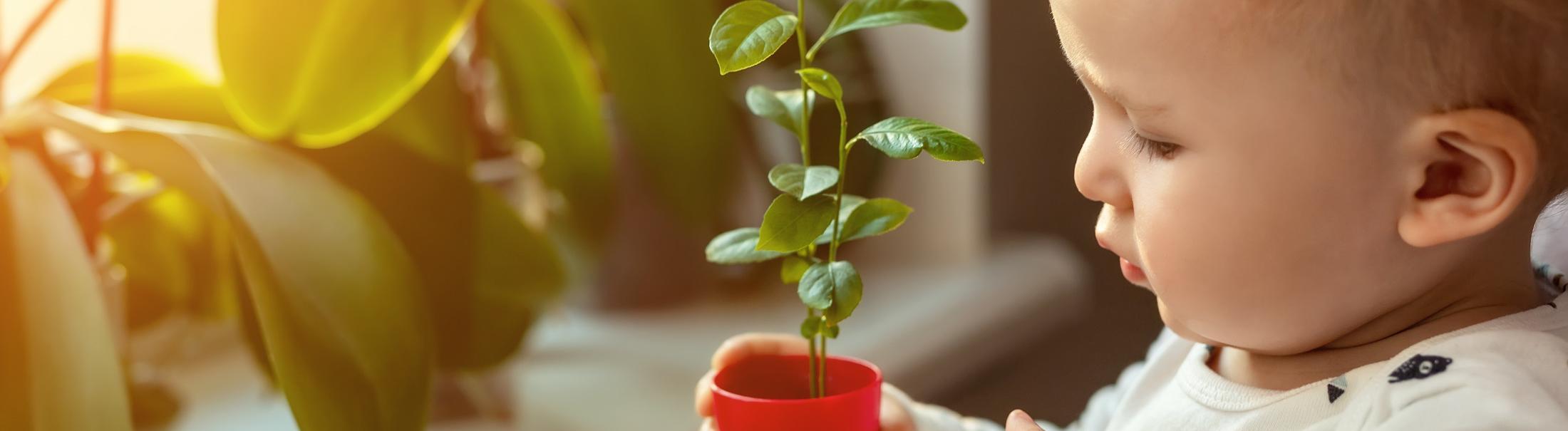 Dziecko i eko – czy to się wyklucza?