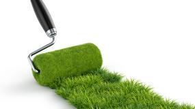 Gdzie kupić żywy trawnik?