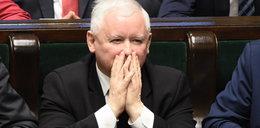 To naprawdę zaboli Kaczyńskiego! Polacy pokazali, co myślą