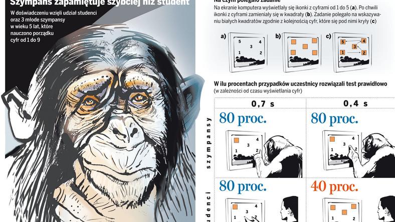 Człowiek pochodzi od małpy? Oto cała prawda