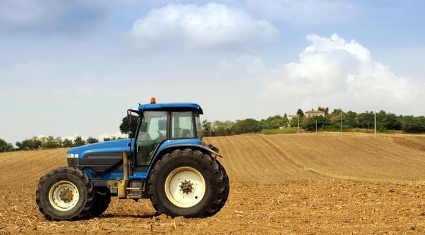 Spis rolny pokazał tendencję polegającą na zmniejszaniu się liczby gospodarstw rolnych