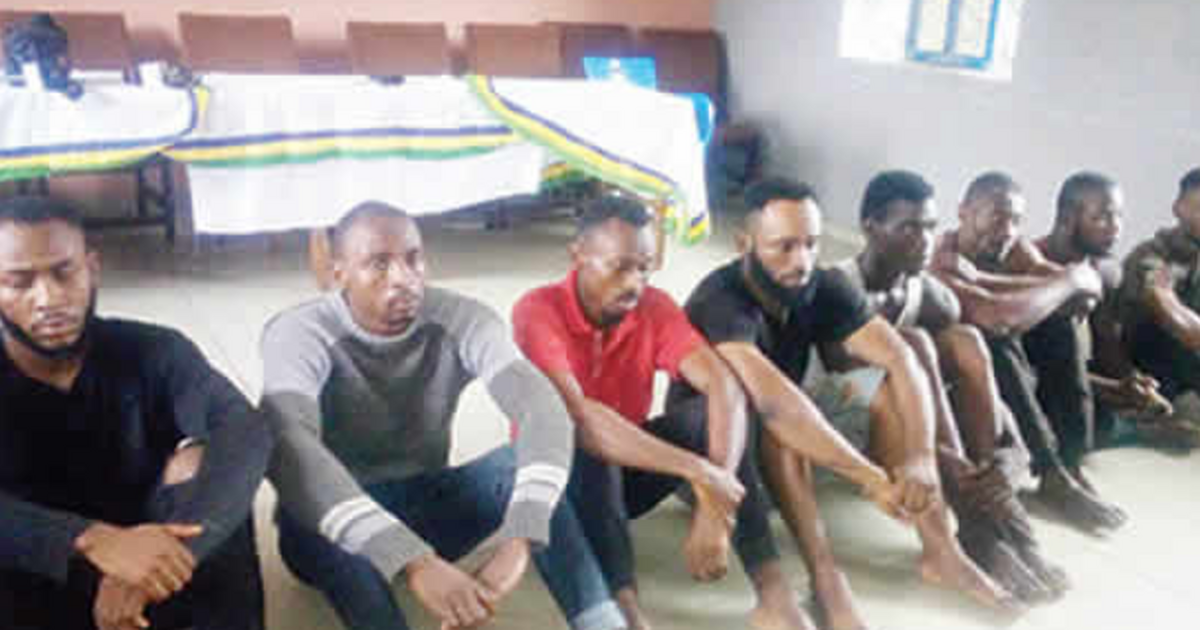 Police arrest undergraduates for cultism in Imo - Pulse Nigeria