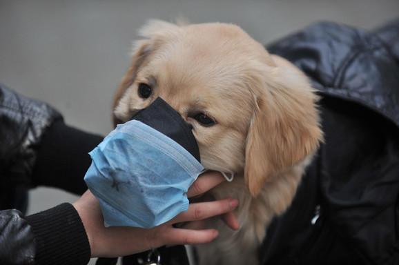 Virus se može naći na koži ili krznu ljubimca, ali to ne znači da je on zaražen