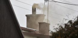 Czujniki nie zlikwidują smogu!