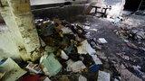 Nadpalone dokumenty w pustostanie pod Warszawą