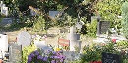 Cmentarz Grabiszyński zamknięty aż do piątku