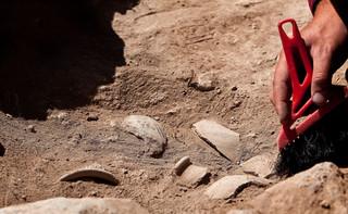 Naukowcy zbadali znalezione w Polsce szczątki neandertalczyków. Wniosek: Są najstarsze w tej część Europy