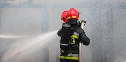 Pożar browaru w Braniewie. Płoną zbiorniki z piwem
